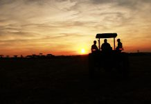 sunset tractor