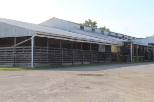 Creston auction barn