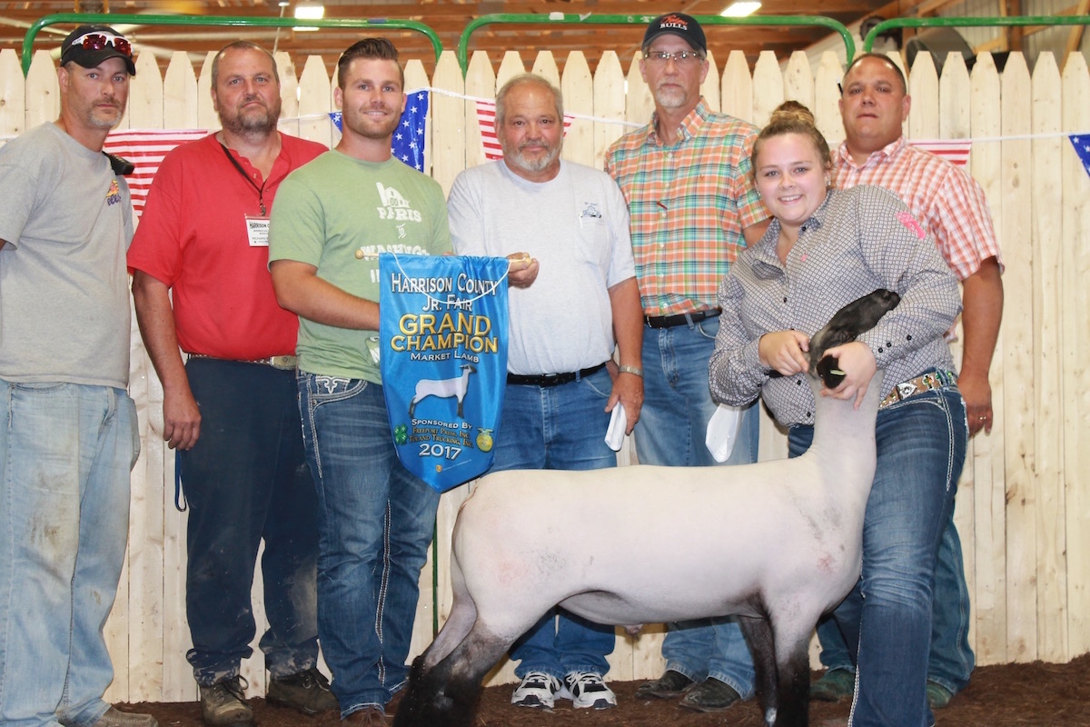 Lamb sets record at Harrison County Fair sale - Farm and Dairy