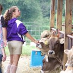National Brown Swiss Convention farm tours