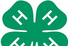 4-H-logo
