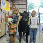 Summit County champion steer