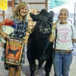 Summit Co champion steer