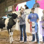 Medina County champion light feeder calf