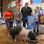 Medina County champion market hog