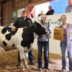 Medina County reserve champion heavy feeder calf