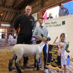 Medina County reserve champion lamb