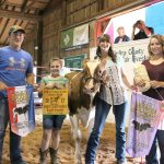 Medina County reserve champion light feeder calf