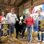 Medina County reserve champion steer