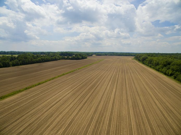 Tilled field