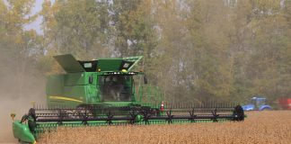 Soybean harvest 2017