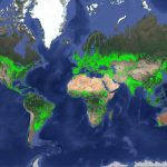 World cropland map