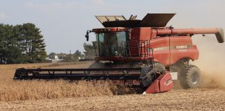 combining soybeans, farm, USDA, grain markets