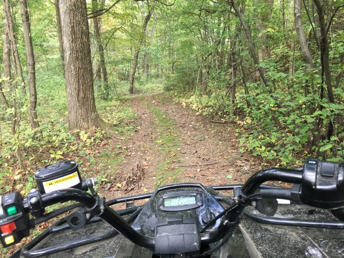 ATV in woods
