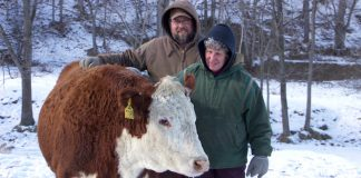 Jeff and Lou Ellen Harr, J&L Cattle