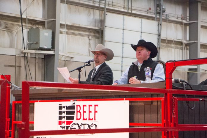 Beef Expo auction