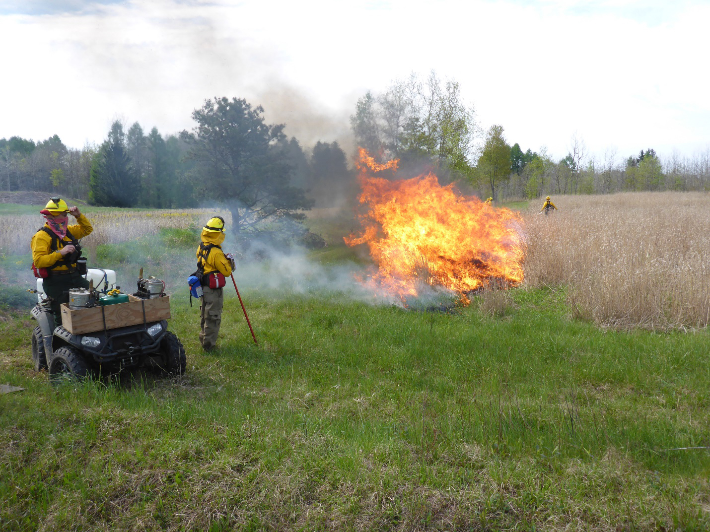 controlled burns Each spring and fall, our restoration ecologists conduct controlled burns across  hundreds of acres throughout the preserves controlled burns are considered a.