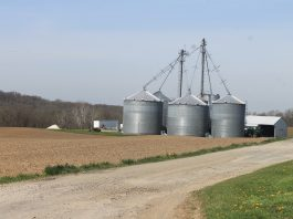 Spillman Grain Farm