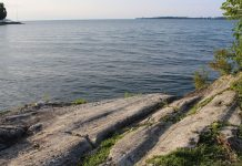 Lake Erie island shore