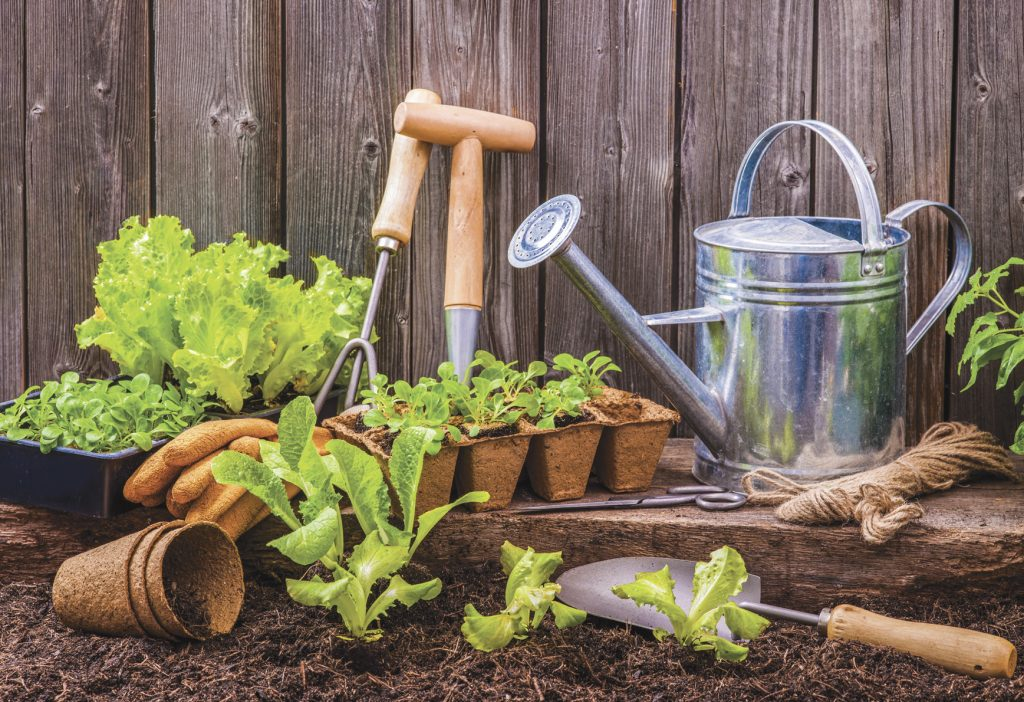 Roundup Of Gardening News For June 13 2019 Farm And Dairy