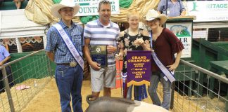 Canfield Fair grand champion hog