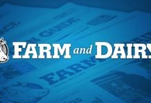 Farm and Dairy logo
