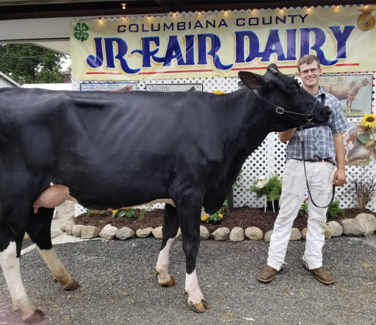 Supreme Champion of Champions at the 2018 Columbiana County Fair Dairy Show