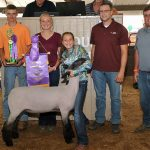 Lorain grand champion lamb