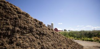 silage pile