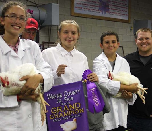 champion broilers