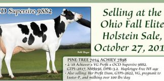 Ohio Holstein Sale