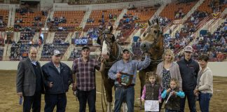 2019 Pennsylvania Farm Show pony pulls