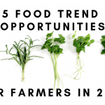 5 food trend banner