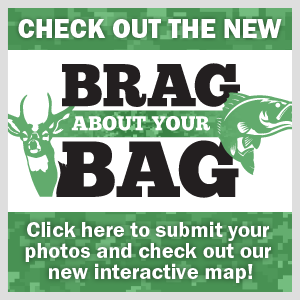 Brag About Your Bag online promo