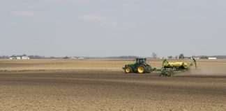 delayed planting, corn,