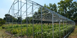 rural development, tunnel greenhouse, USDA,