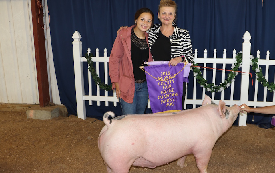 New rules for Pa  swine shows at county fairs - Farm and Dairy