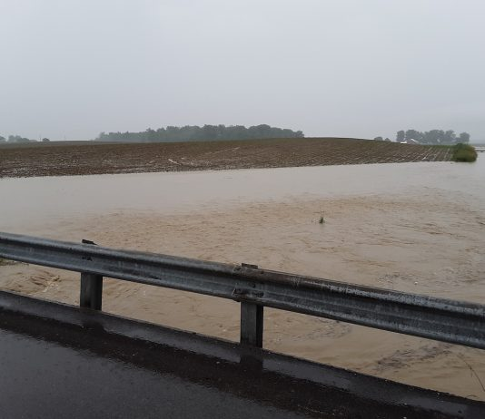 Flood waters in a shelby county corn field