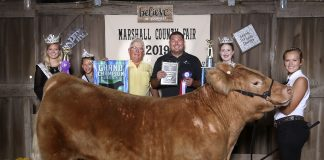 Marshall County Fair grand champion steer