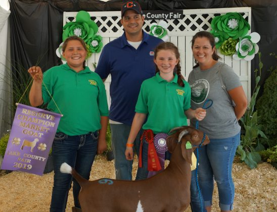 2019 Lake County Fair Reserve Champion Goat