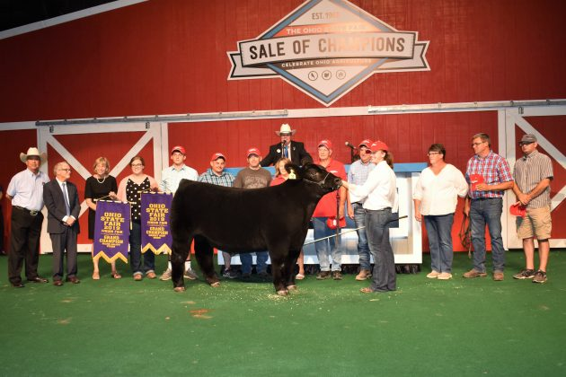 2019 Ohio State Fair Sale Grand Champion Market Beef