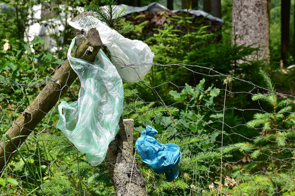 plastic bags littered on trees