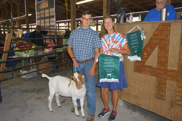 2019 Summit County Fair Reserve Champion Goat