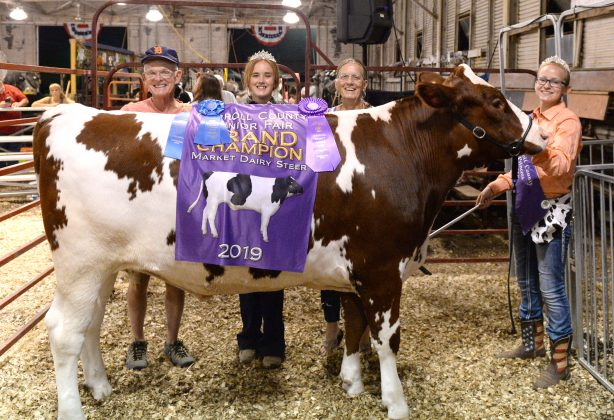 2019 Carroll County Fair Sale Grand Champion Dairy Market Steer