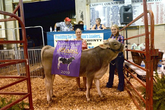 2019 Carroll County Fair Sale Grand Champion Dairy Beef Feeder