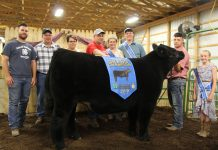 Phillip Kellar's grand champion market steer sold to D&J Sales and Service and Paris and Washington Insurance for $5 per pound.