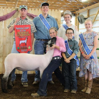 Nora Jackson's reserve champion lamb sold to Murral Excavating for $7.25 per pound.