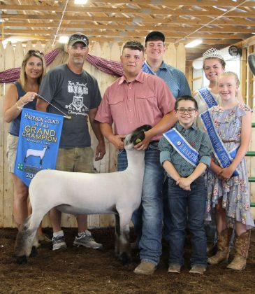 The grand champion lamb sold to D&E Electric for $6.75 per pound. Phillip Kellar exhibited the lamb.