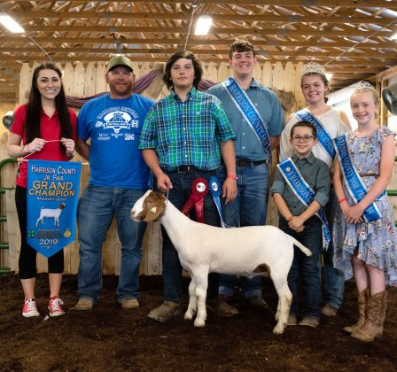 Dawson Vich's grand champion market goat sold to Dino Piergallini and Sons, Porterfield's Drive Thru and Border Patrol for a record $3,025.