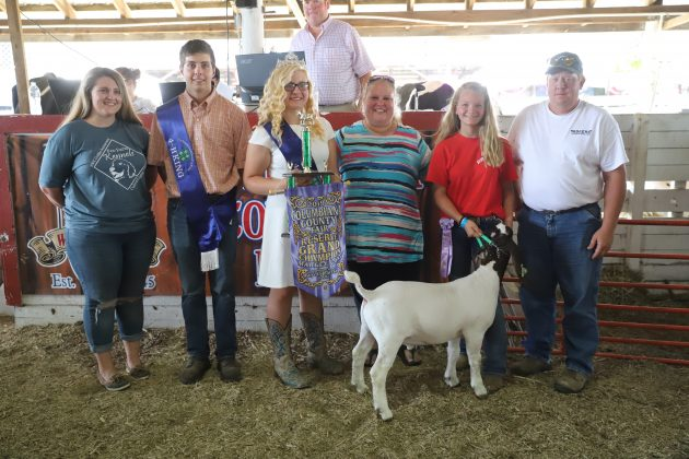 2019 Columbiana COunty Fair Reserve Champion Boer Goat